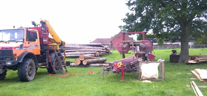 Oxfordshire, cutting Douglas for large barn