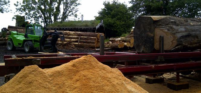 Contract milling at Crocadon sawmill for Mike Mann
